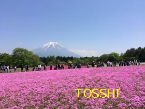 fuji2.jpg